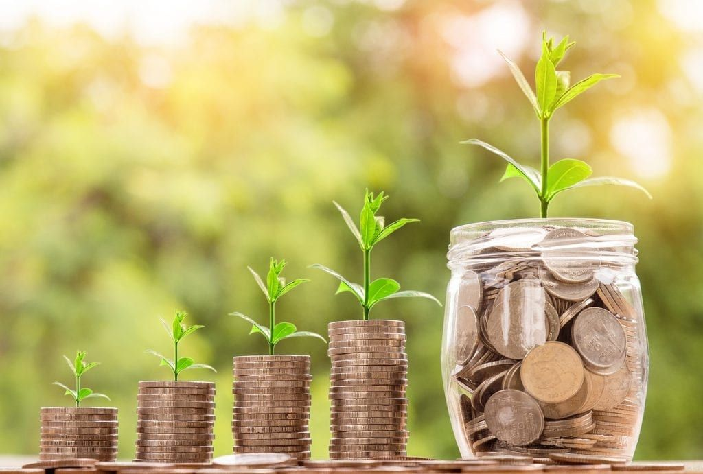 tfsa growing